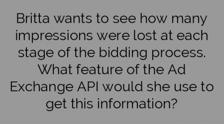 Britta wants to see how many impressions were lost at each stage of the bidding process. What feature of the Ad Exchange API would she use to get this information?